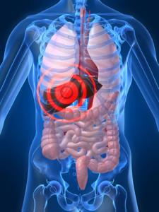 Limpie su hígado y pierda peso en solo 72 horas!!!