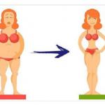 bajar de peso es posible haciendo estas 3 cosas