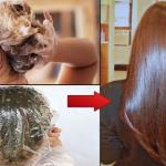 Formula casera para obtener un cabello hermoso en 15 minutos