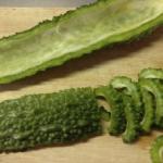 La planta que mata las células cancerosas, diabetes y presión arterial