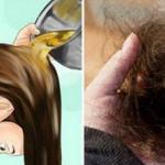 La caída de cabello ya no será más un problema, pues tu cabello crecerá como loco con este ingrediente