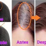 Eliminarás la caspa, las canas y detendrás la caída de cabello aplicando esto en tu pelo