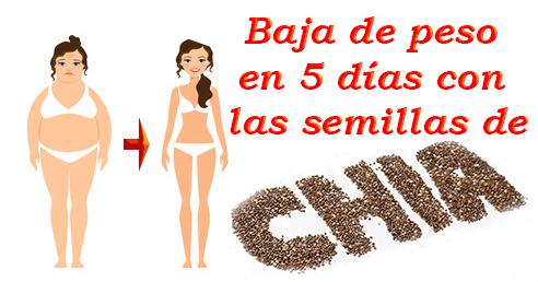Las semillas de chia sirven para bajar hasta 5 kilos en 5 días