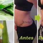 Aprende a perder hasta 5 kilos en una semana con Aloe Vera