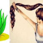 Tu cabello crecerá como loco con ayuda del áloe vera, descubre como