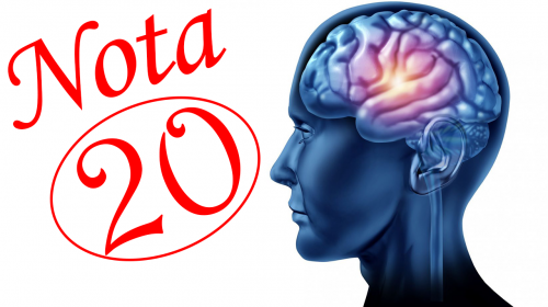 Reconocida DRA nos revela la manera de mejorar la memoria y aumentar la inteligencia