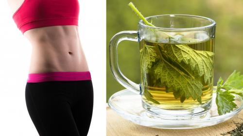 Con el té de apio perderás 7 kilos en 15 días, te enseñamos a prepararlo