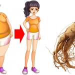 Esta raíz hará que no sientas tanto hambre y te hará perder peso como loco