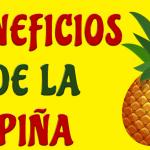La piña será tu fruta favorita luego de que conozcas todos sus beneficios