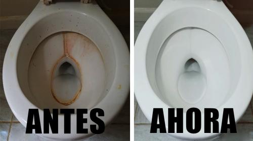 Blanquea tus baños al instante !!