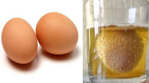 Nunca mas sentirás dolores de huesos y articulaciones gracias al huevo