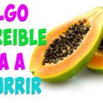 No tienes ni la menor idea de lo que OCURRE en tu cuerpo cuando comes Papaya Diario