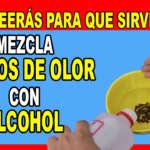 POCOS CONOCEN EL POTENCIAL QUE POSEE LA MEZCLA DE CLAVOS DE OLOR CON ALCOHOL – DESCUBRE PARA QUE SIRVE
