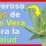 Como Preparar el Poderoso Jugo de Aloe Vera y Para que Sirve Tomarlo!