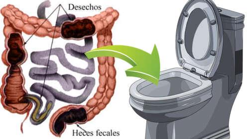 Limpia el Colon y Quita 2 Kilos de Caca Atorada tomando 1 vaso